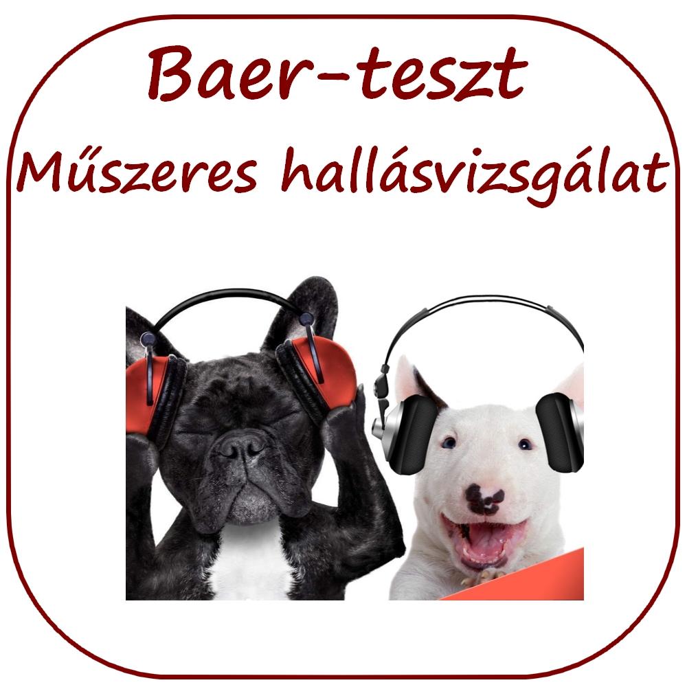baer-teszt, kutya hallásvizsgálat