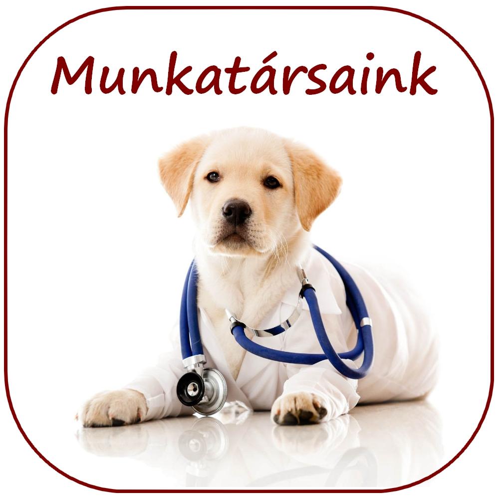 Dr. Gargya Sándor állatorvos